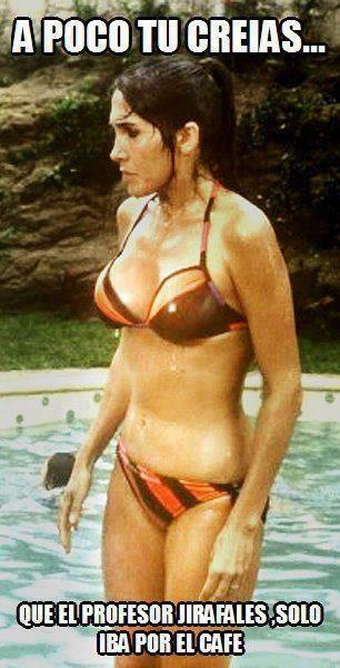 florinda-meza-en-bikini